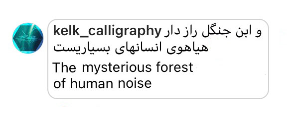 Comment: The mysterious forest of human noise