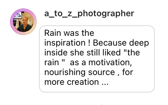 """Comment: Rain was the inspiration! Because deep inside she still liked """"the rain"""" as a motivation, nourishing source, for more creation..."""