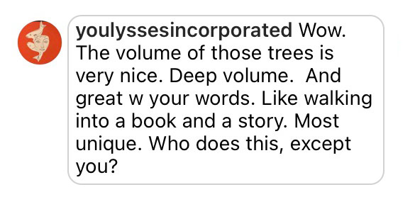 Comment: Wow. The volume of those trees is very nice. Deep volume. And great your words. Like walking into a book and a story. Most unique. Who does this, except you?